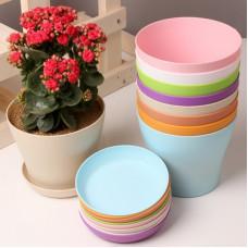Горшки и кашпо для выращивания цветочных, декоративных культур, вазы для цветов, кактусницы. Кронштейны для кашпо и горшков. Автополив.