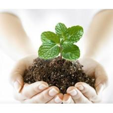 Средства защиты растений, удобрения