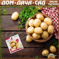 Пора заняться картошкой