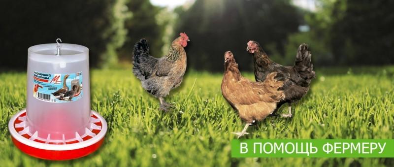 Кормушка для птиц БОЛЬШАЯ МилихПпластик 05017 купить в ЭкоФерма73.ру